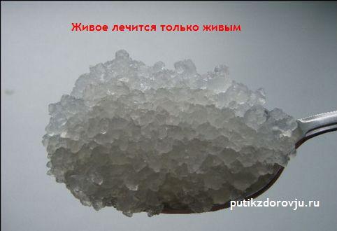 Индийский морской рис: полезные свойства-2