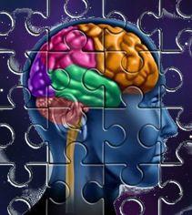 Запоминание и познавательные способности человека-1