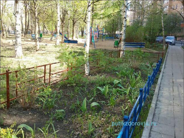 Новые люди новой земли создают духовное возрождение России-2