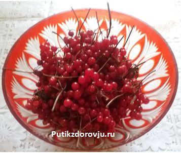 lechebnyie-svoystva-kalinyi1