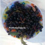 Витамины в черноплодной рябине