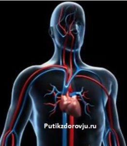 Как сохранить сердце здоровым-1