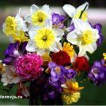 С праздником Международного женского дня 8 марта