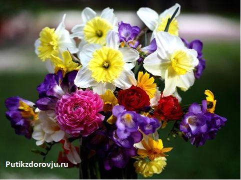 С праздником Международного женского дня 8 марта-1