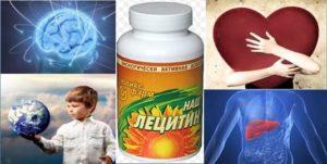 Лецитин. Польза и применение-1