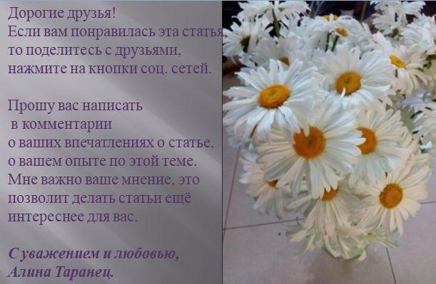 Иван чай. Польза иван чая для мужчин-4