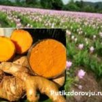 Куркума— защита от болезней. 10 полезных рецептов с куркумой