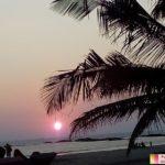 Отдых в Индии, Гоа  в ноябре 2017 года. Отзыв