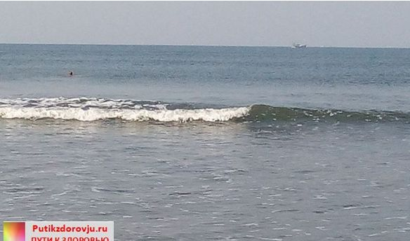 Путешествие в Индию. Отзыв об отеле Morjim Holiday Beach Resort 2-1