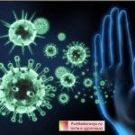 Как быстро повысить иммунитет. 25 лучших рецептов