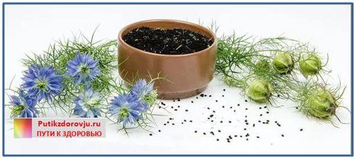 Семена черного тмина-2