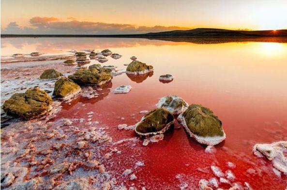 Кояшское розовое озеро-5