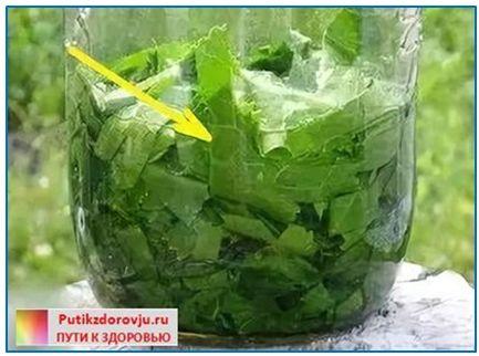 Лечение листьями хрена отложения солей в суставах и позвоночнике