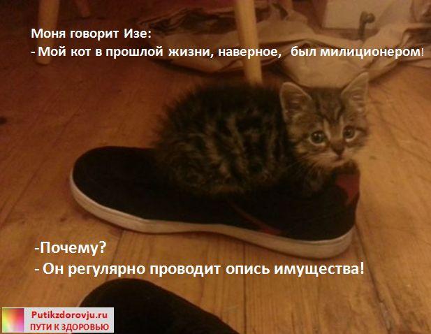 Юмор из Одессы -1