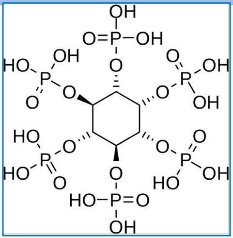 Фитиновая кислота в орехах и крупах-1