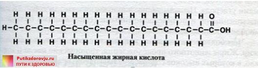 Классификация жиров-1