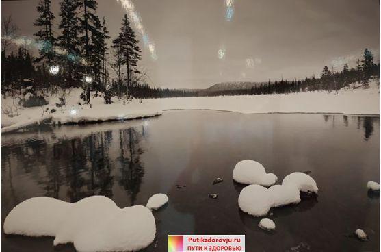 Выставка Первозданная Россия-2019 в Москве-6