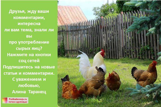 Сырые яйца - польза или вред-8