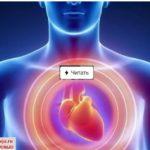 Усталость сердца – как избежать, советы академика Амосова