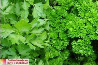 samye-poleznye-produkty-dlya-ochischeniya-organizma-10.jpg