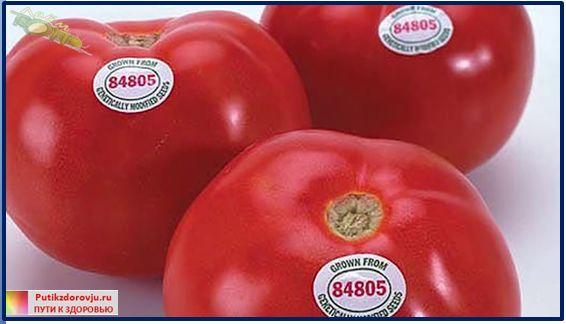 Продукты с ГМО ведут к бесплодию и раку-3