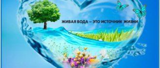 живая вода - что это-1