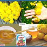 Применение цветков одуванчика-полезные рецепты