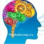 Как улучшить работу мозга правильным питанием крупами