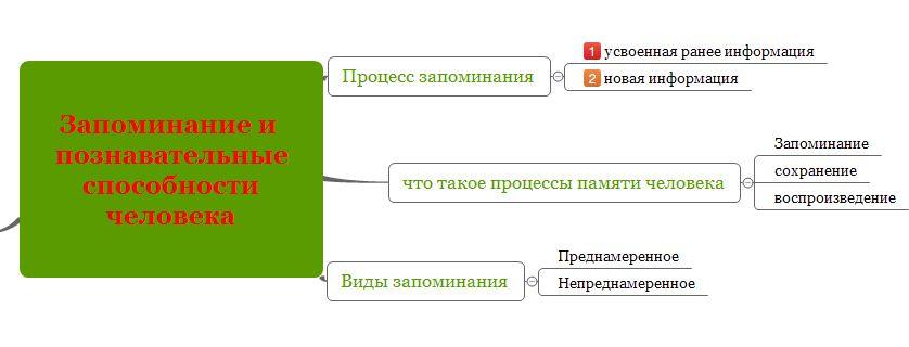 Как пользоваться интеллект картой X-Mind для запоминания информации-8