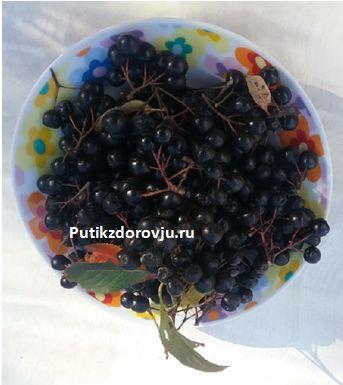 Витамины в черноплодной рябине-1