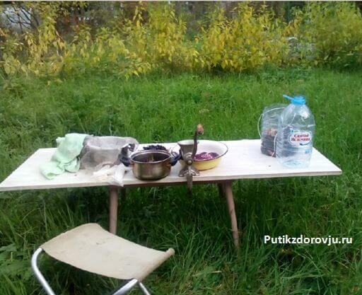 рецепт сока из черноплодки-2