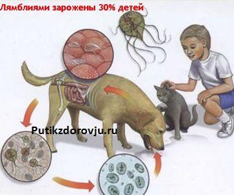 poleznyie-svoystva-kvashenoy-kapustyi18