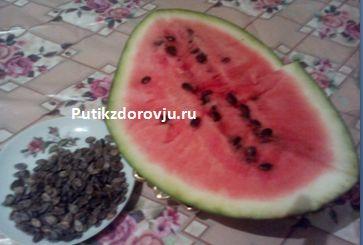 Польза арбузных семечек1