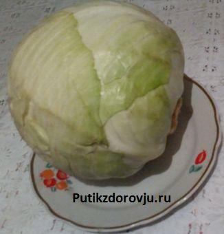 Польза свежей белокачанной капусты1