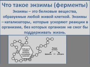 o-polze-syiryih-ovoshhey-i-fruktov2