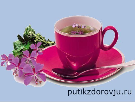 Иван чай. Польза иван чая для мужчин-1