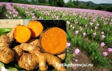 Куркума защита от болезней. 10 полезных рецептов с куркумой-1